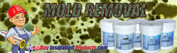 mold-removal-banner.png